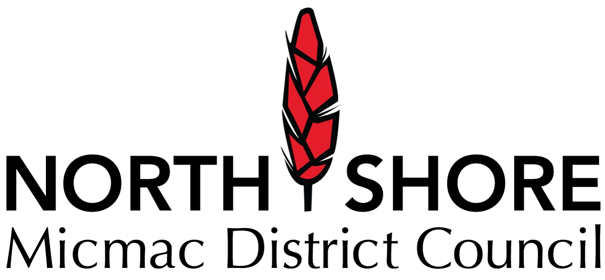 nsmdc-logo-lg